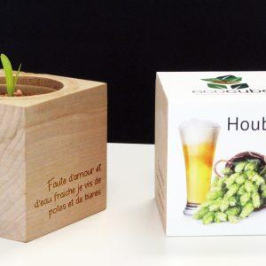 Les Eco Cube - Plante à pousser à messages